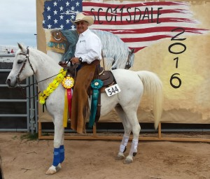 AM Shahrazad - Scottsdale 2016 Open Reserve Champ